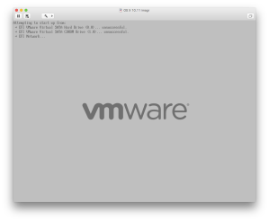 VMWare booting up