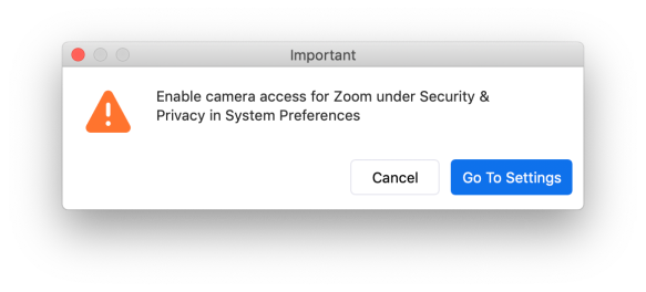Zoom Enable camera access
